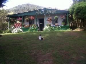Fincas en Venta en Colombia